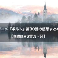 ボルト アニメ 第30話 感想